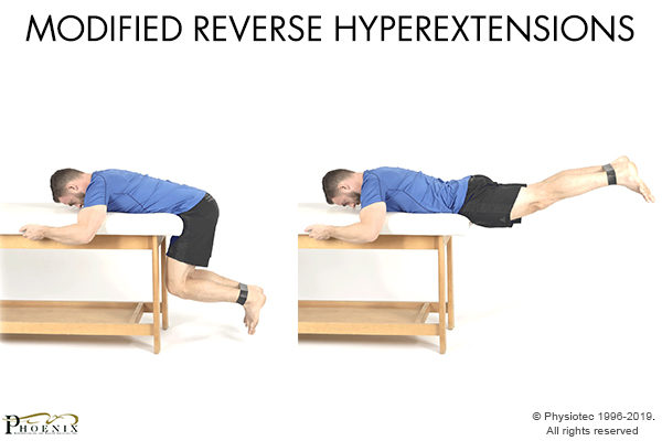 modified reverse hyperextensions