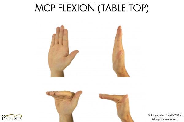 MCP Flexion