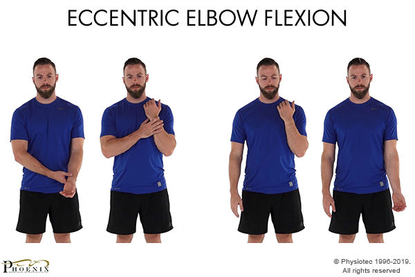 Eccentric Elbow Flexion
