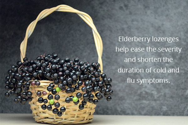 elderberries are nutritious to consume during winters