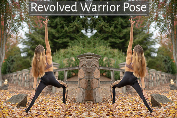 revolved warrior yoga pose