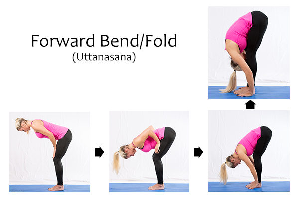 forward bend/fold (uttanasana) to relieve back pain when sitting all day