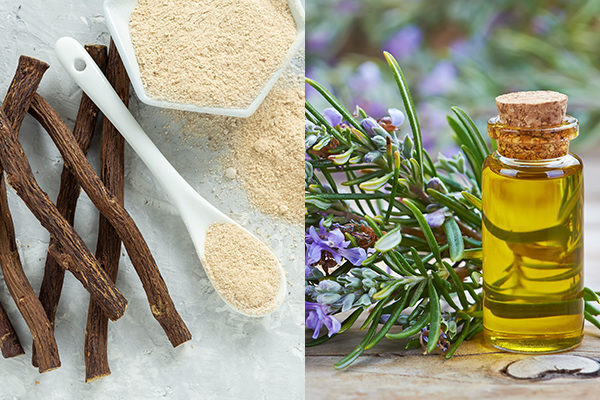 herbs that may raise low blood pressure