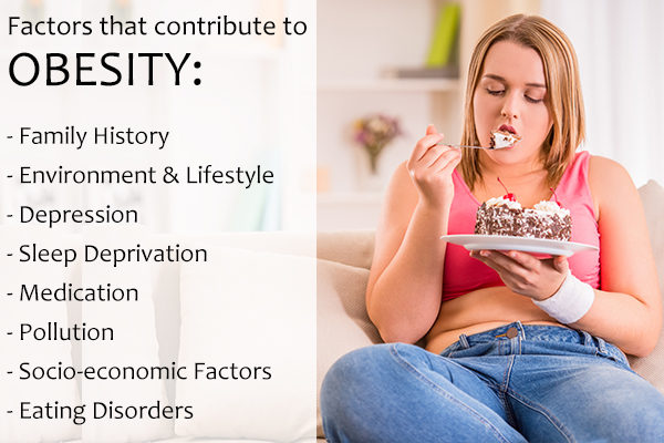 factors which lead to obesity