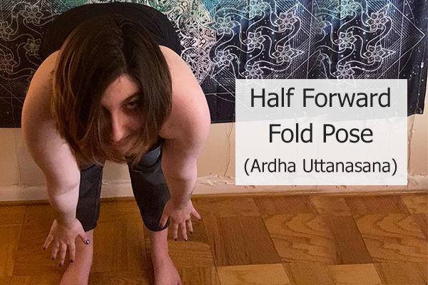 half forward fold pose )ardh uttanasana)