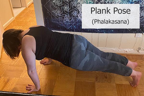 plank pose (phalakasana)