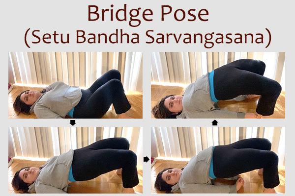 bridge pose (setu bandha sarvangasana)