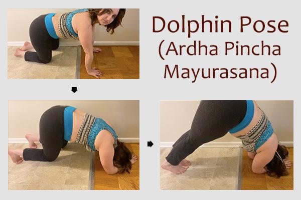 dolphin pose (ardha pincha mayurasana)