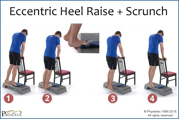 eccentric heel raise + scrunch exercise