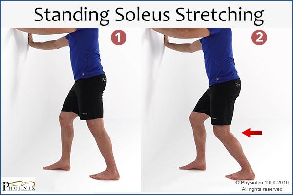 standing soleus stretching