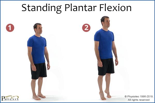 standing plantar flexion exercise