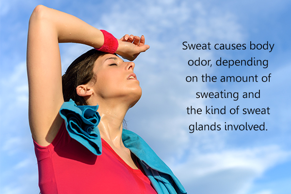 does sweat causes body odor?
