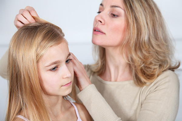 who are at risk of head lice infestation?