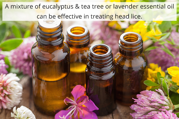 essential oils may help in managing head lice