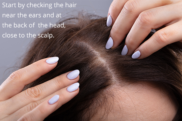 self-care tips to manage head lice