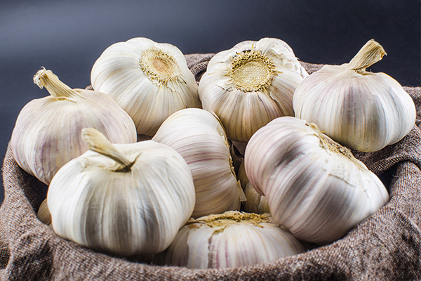 garlic consumption may aid relief in dental abscess