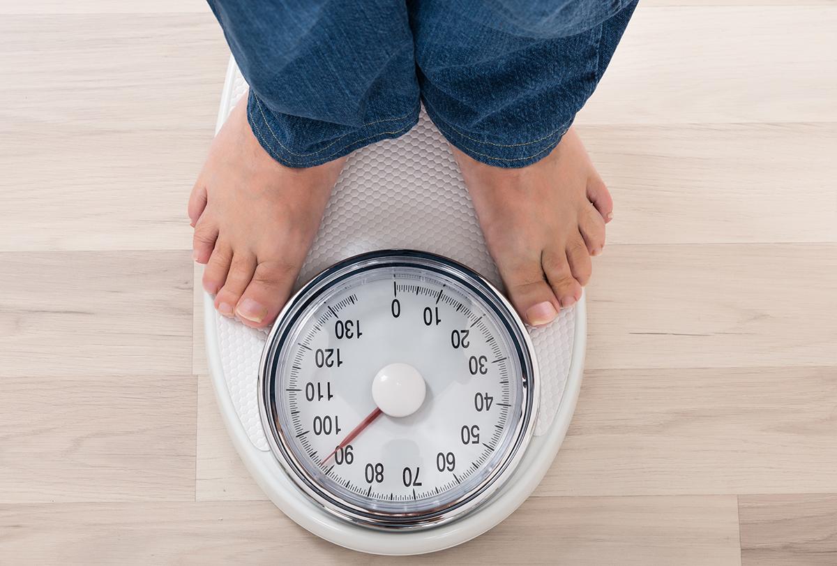 major contributors to obesity