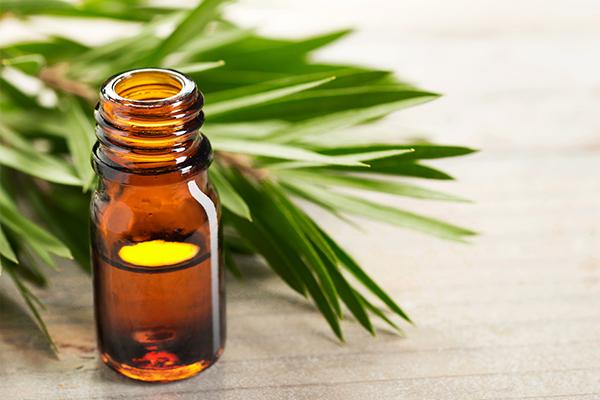 tea tree oil can help treat keloid scars