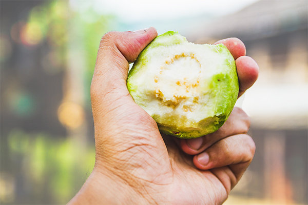 cautions and considerations before consuming guava