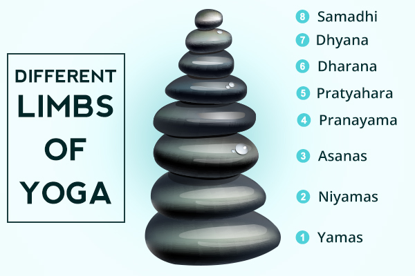 the different limbs of yoga