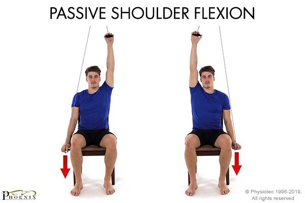 passive shoulder flexion