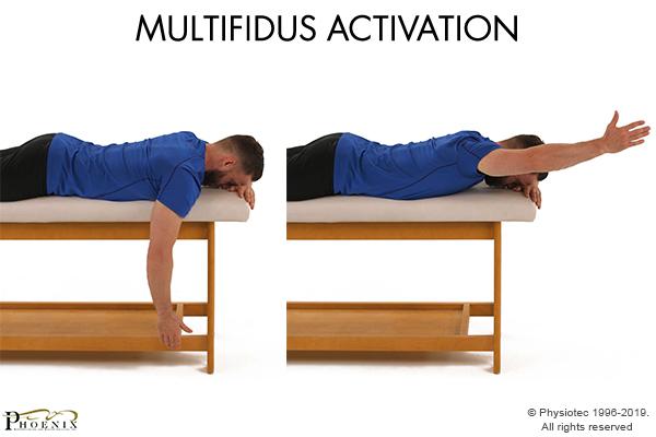 multifidus activation
