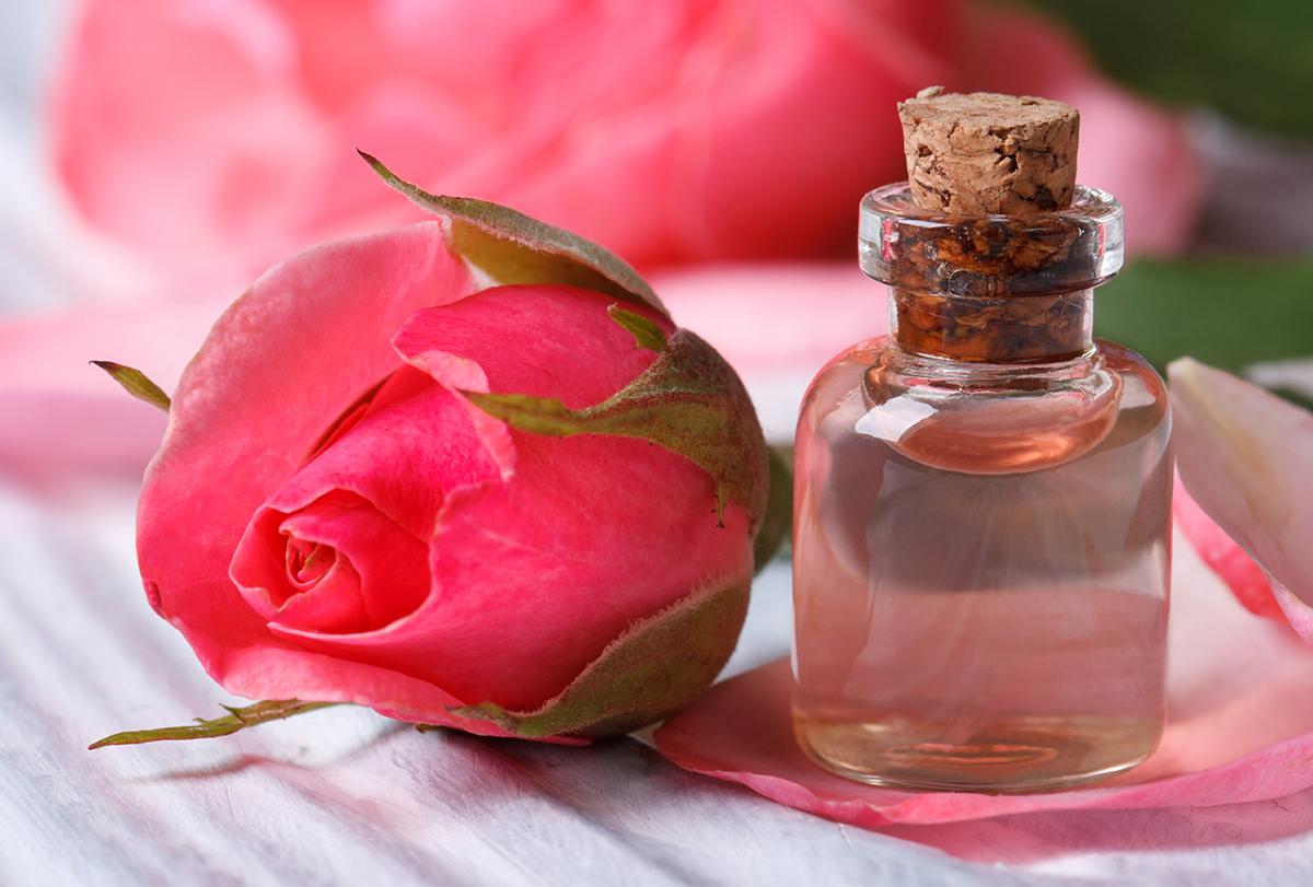 diy homemade rose water