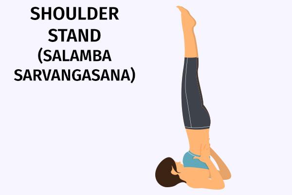 shoulder stand (salamba sarvangasana)