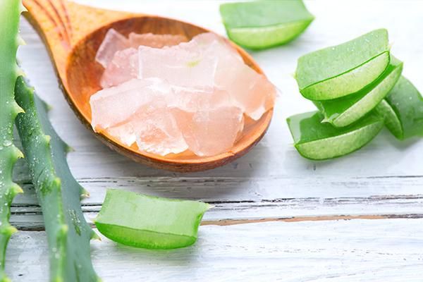 aloe vera gel application can help moisturize your skin