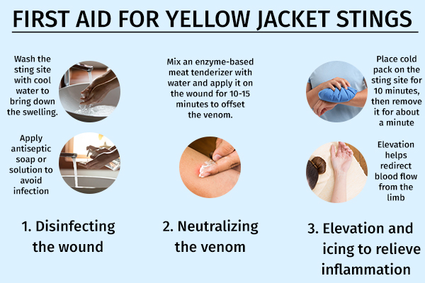 first aid for yellow jacket stings