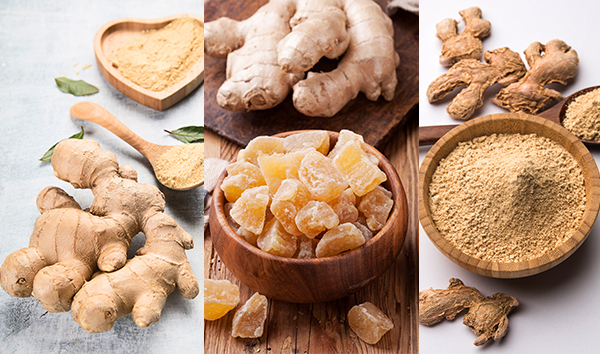 uses and applications of ginger