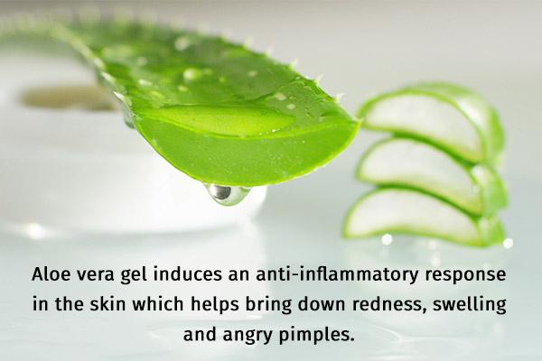 aloe vera gel possesses anti-inflammatory properties