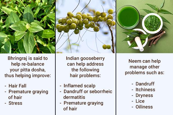 bhringraj, neem, Indian gooseberry can cure hair problems
