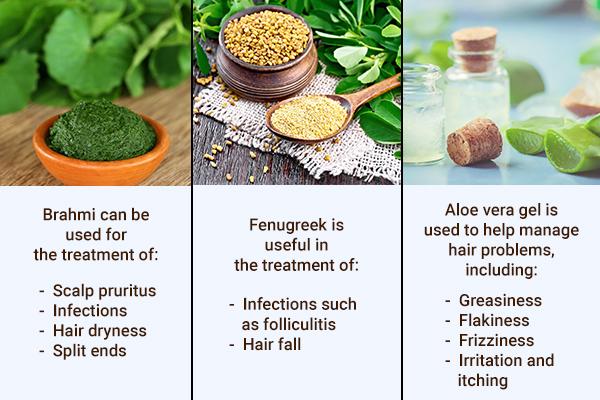 brahmi, fenugreek, aloe vera gel can help prevent hair problems