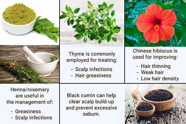 rosemary, thyme, Chinese hibiscus can help manage hair troubles