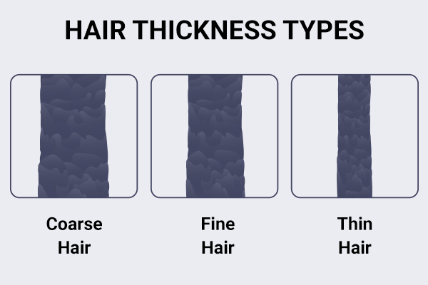 coarse, fine, and thin hair explained