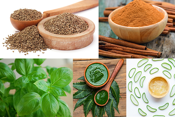 home remedies that can reverse smoking induced hair damage