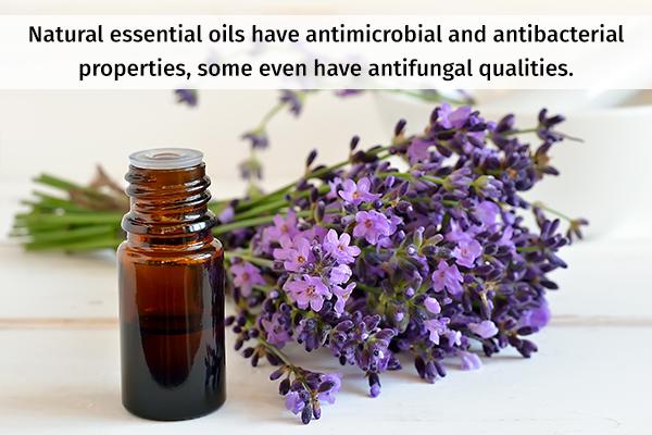 essential oils possess antifungal qualities