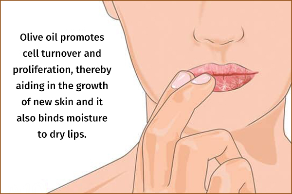 olive oil aids in growth of new skin and repair chapped lips