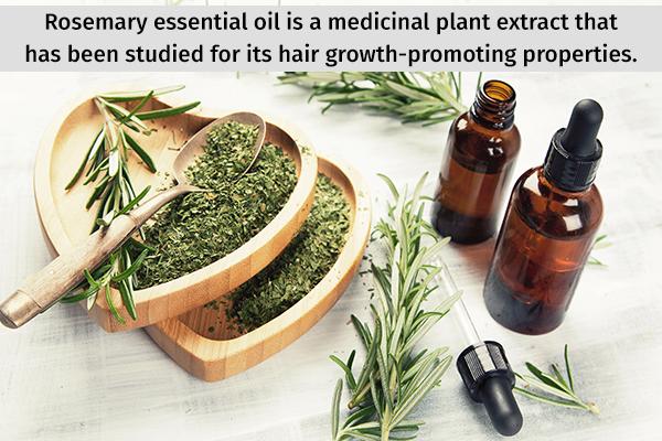 rosemary essential oil has hair-growth promoting properties