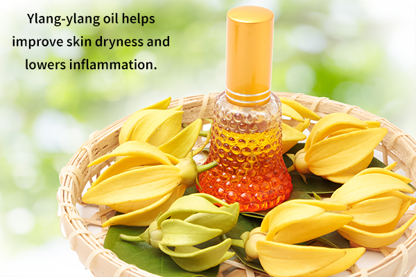 ylang-ylang oil helps improve skin dryness and lowers inflammation