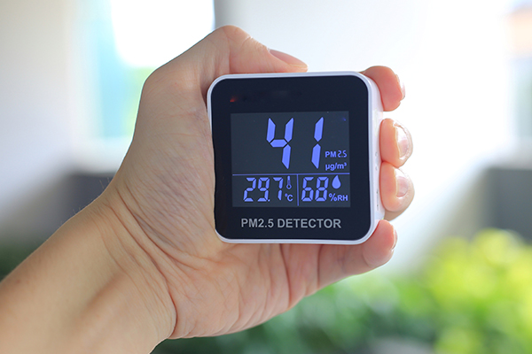 check air quality of your surroundings to prevent allergies