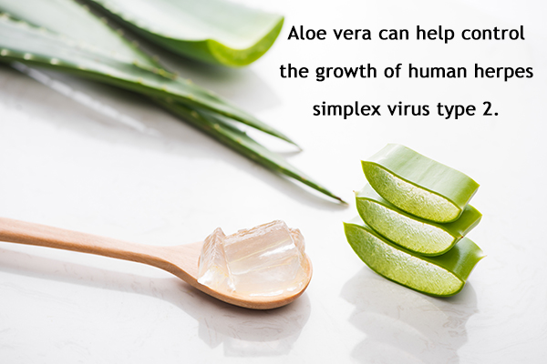 aloe vera can help control skin infections