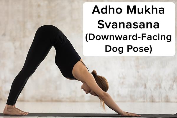 adho mukha svanasana (downward-facing dog pose)