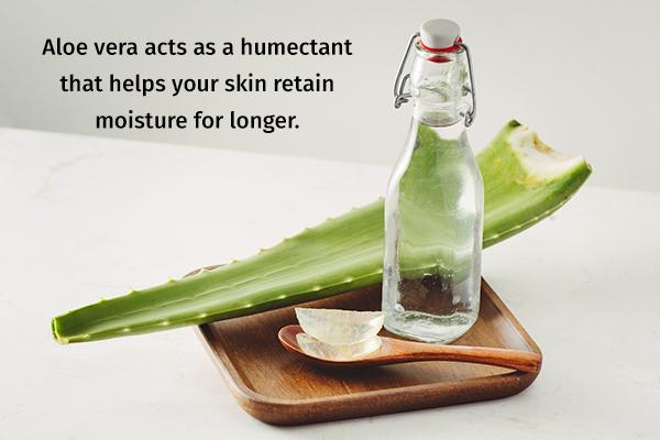 aloe vera can help prevent dry skin