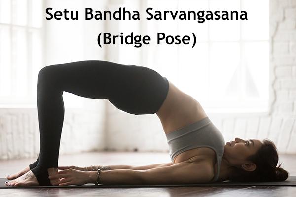 setu bandha sarvangasana (bridge pose)