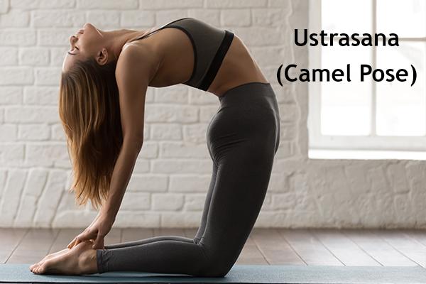 ustrasana (camel pose)