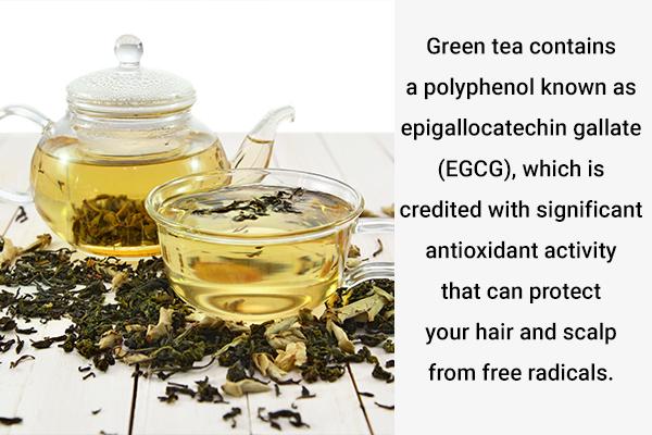 green tea supports healthy hair growth
