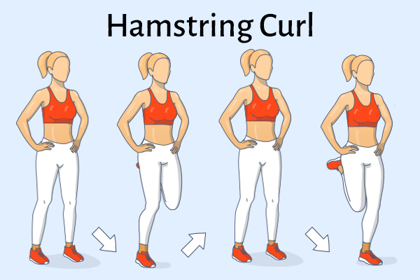 hamstring curl for healthy knees