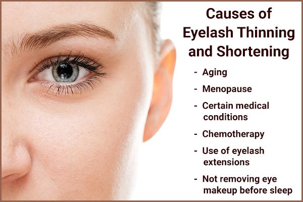 eyelash thinning and shortening causes